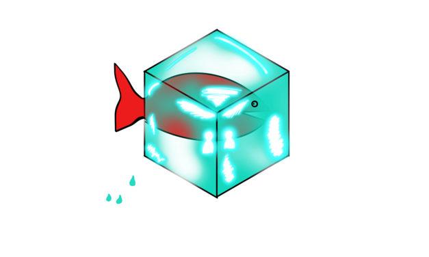 Il mistero del pesce decongelato…