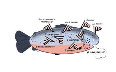 C'è salmone e salmone e c'è dito e dito…